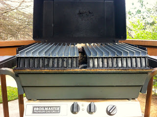 2-Zone Grilling with GrillGrate