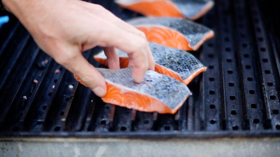 Salmon Flesh Down